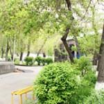 armenian_extremum
